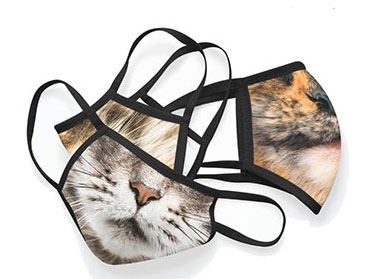 Maine Coon Cat Washable Face Mask