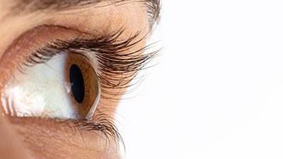 Cornea Specialist near me in Los Angeles, Assil Eye Institute